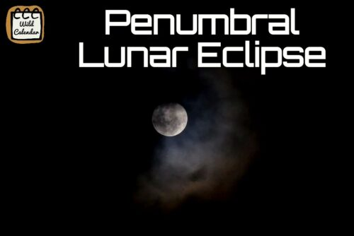 Read more about the article Penumbral Lunar Eclipse