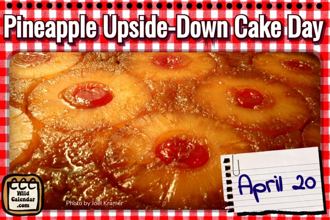 Pineapple Upside-down Cake Day