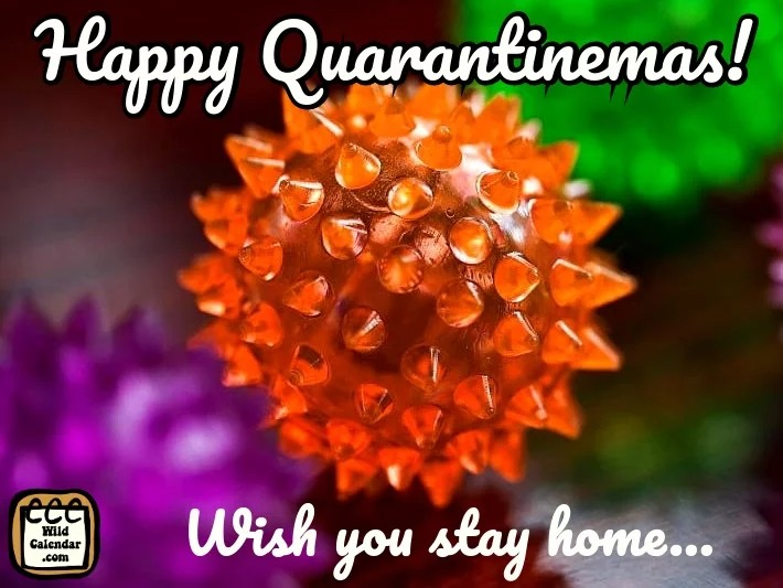 Quarantinemas is here!