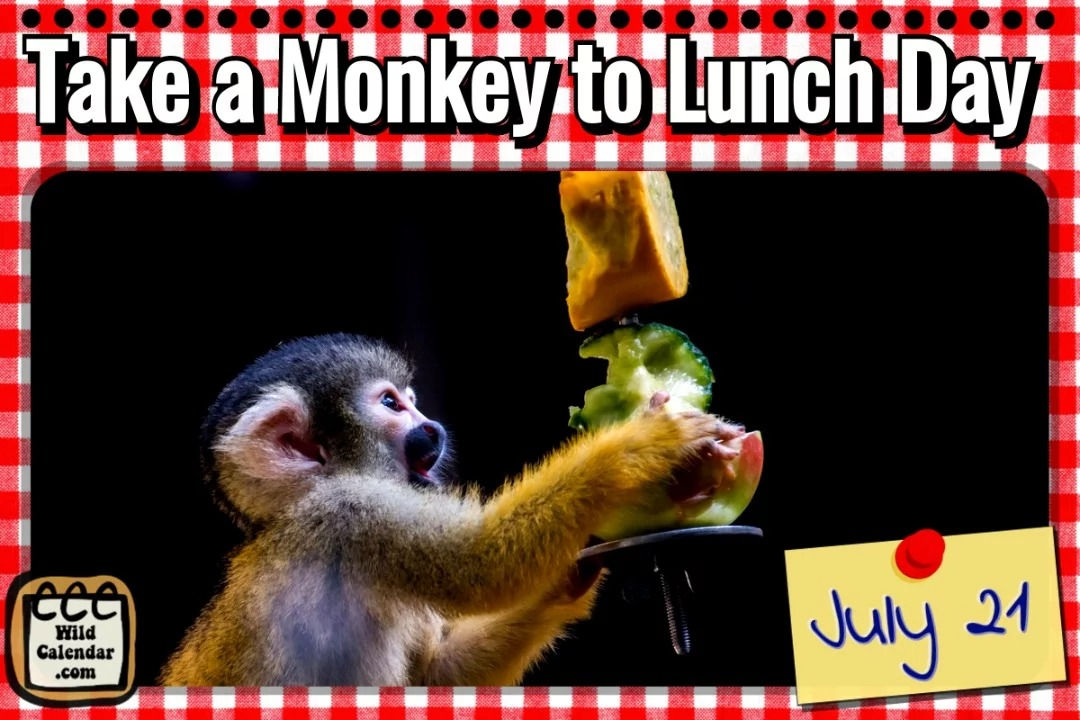Take a Monkey to Lunch Day