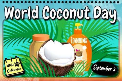 Read more about the article World Coconut Day