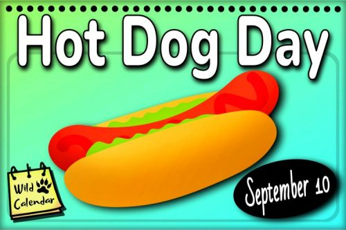 Read more about the article Hot Dog Day